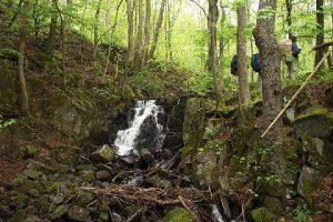 Wasserfälle gibt es auch